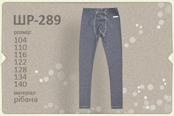 Детские термо штаны для мальчика ШР 289 ТМ Бемби, рибана продается в комплекте с ФБ 723
